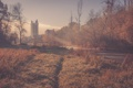 Картинка осень, лес, солнце, туман, река, замок, башня