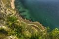 Картинка дорога, море, природа, скала, пальмы, побережье, Gibraltar