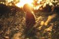 Картинка поле, девушка, солнце, Golden Dreams