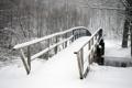 Картинка холод, зима, деревья, мост, парк, заснеженный, Snowbound bridge