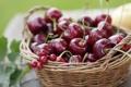 Картинка лето, макро, вишня, ягоды, корзина, фрукты, смородина
