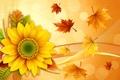 Картинка листья, цветок, колосья, осень, коллаж, подсолнух