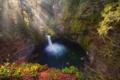 Картинка лес, осень, водопад, природа, вода, озеро, утро