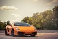 Картинка небо, деревья, оранжевая, Lamborghini, Gallardo, блик, ламборджини