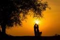 Картинка чувства, поцелуй, счастье, радость, силуэт, пара, закат