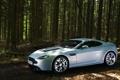Картинка лес, Vantage, V12, Aston Martrin