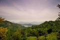 Картинка леса, Sri Lanka, панорама, природа, остров, горы, поля