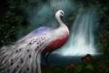 Картинка лес, павлин, белый, водопад, птица, арт, цветы