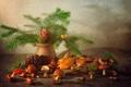 Картинка грибы, ель, натюрморт, шишка, лесной, маслята