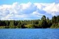 Картинка лес, лето, облака, деревья, озеро, берег