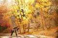 Картинка осень, деревья, радость, фон, пара, прогулка, боке