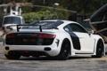Картинка Audi, ауди, GTR, white, задняя часть, Razor, PPI