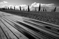 Картинка песок, пляж, небо, фото, доски, ч/б, зонты