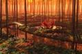 Картинка лес, река, трава, девушка, вода, деревья, мостик