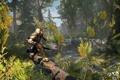 Картинка лес, коннор, Assassin's Creed III, бежит, AC III Frontier Log Run