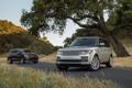 Картинка дорога, фон, дерево, Mercedes-Benz, джип, внедорожник, Land Rover