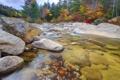 Картинка осень, лес, небо, деревья, горы, река, камни