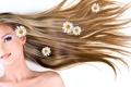 Картинка девушка, обои, волосы, весна, прическа