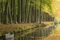 Картинка дорога, деревья, лодка