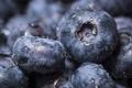 Картинка macro, fruit, blackberry