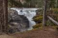 Картинка лес, деревья, река, водопад