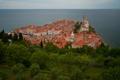 Картинка крыша, море, деревья, башня, дома, Slovenia, словения