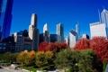 Картинка осень, небо, деревья, небоскреб, дома, Чикаго, США
