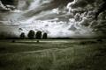 Картинка облака, деревья, дорога, природа, поле, небо, пейзаж