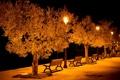 Картинка свет, город, улица, скамьи