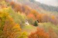 Картинка осень, деревья, горы, дом, склон