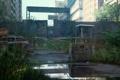 Картинка машины, город, стена, апокалипсис, эпидемия, The Last of Us