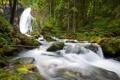 Картинка лес, лето, деревья, природа, камни, фото, водопад