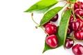 Картинка листья, ягоды, черешня