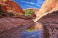 Картинка скалы, небо, каньон, озеро, ущелье, дерево