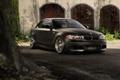 Картинка свет, сетка, BMW, кусты, 135i, рабица