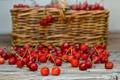 Картинка вишня, ягоды, корзина