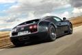 Картинка задок, 16.4, суперкар, Bugatti Veyron, карбон, Super Sport, гиперкар