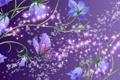 Картинка цветы, бабочка, колокольчики
