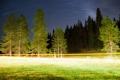 Картинка пейзаж, деревья, дорога, ночь, свет, огни