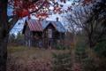 Картинка лес, деревья, дом