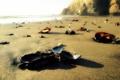 Картинка песок, ракушки, пляж, камни, море