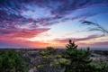 Картинка море, деревья, пейзаж, закат
