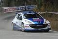 Картинка Спорт, WRC, Rally, Peugeot, 207, Капот, Пежо