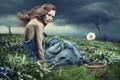 Картинка трава, девушка, креатив, одуванчик, ветер, ураган, горшок