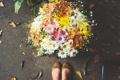 Картинка ноги, букет, балетки, лепестки, обувь, цветы
