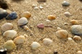 Картинка песок, ракушки, камушки, боке
