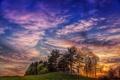 Картинка трава, деревья, рассвет, Холмы