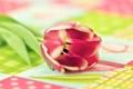 Картинка цветок, макро, фон, тюльпан