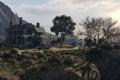 Картинка деревья, дом, лос сантос, gta 5