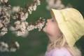 Картинка весна, девочка, цветение, панама